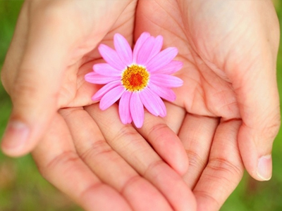 画像:手のひらの上にのったピンク色の花